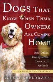 Dogs That Know Book